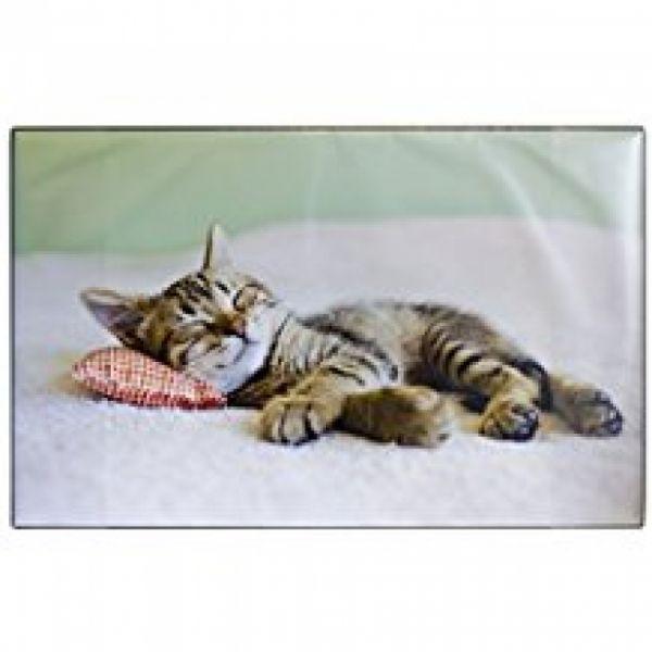 Schreibunterlage Katze