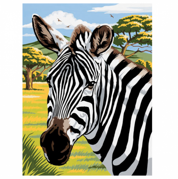 Mammut - Malen nach Zahlen, Zebra